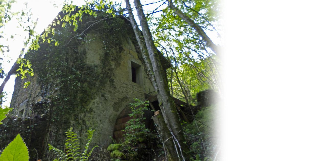 Le Moulin Thusy